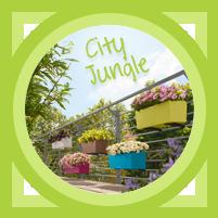 City Jungle