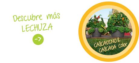 Descubre más LECHUZA: CASCADA CASCADINO