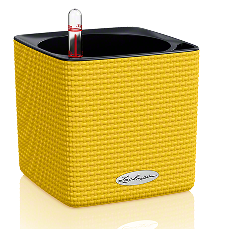 CUBE Color 14 amarillo limón All-in-One Set